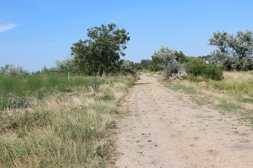 Feldweg am Ortsrand
