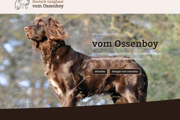 Deutsch Langhaar (DL) vom Ossenboy